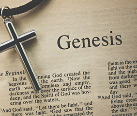 Genesis Quiz