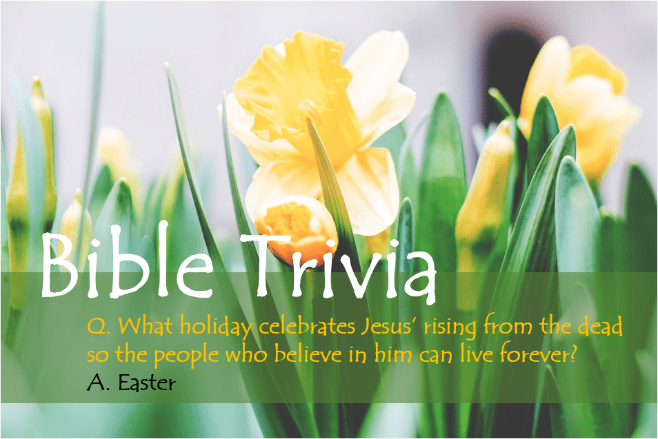 Bible Trivia 108 Capture