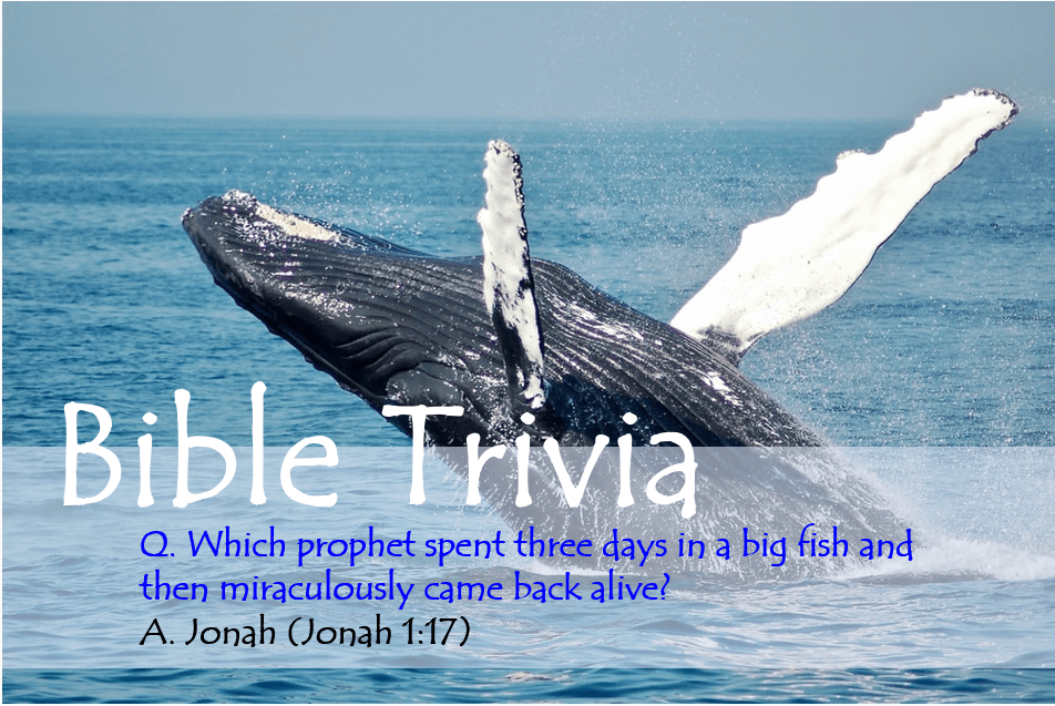 Bible Trivia 109 Capture