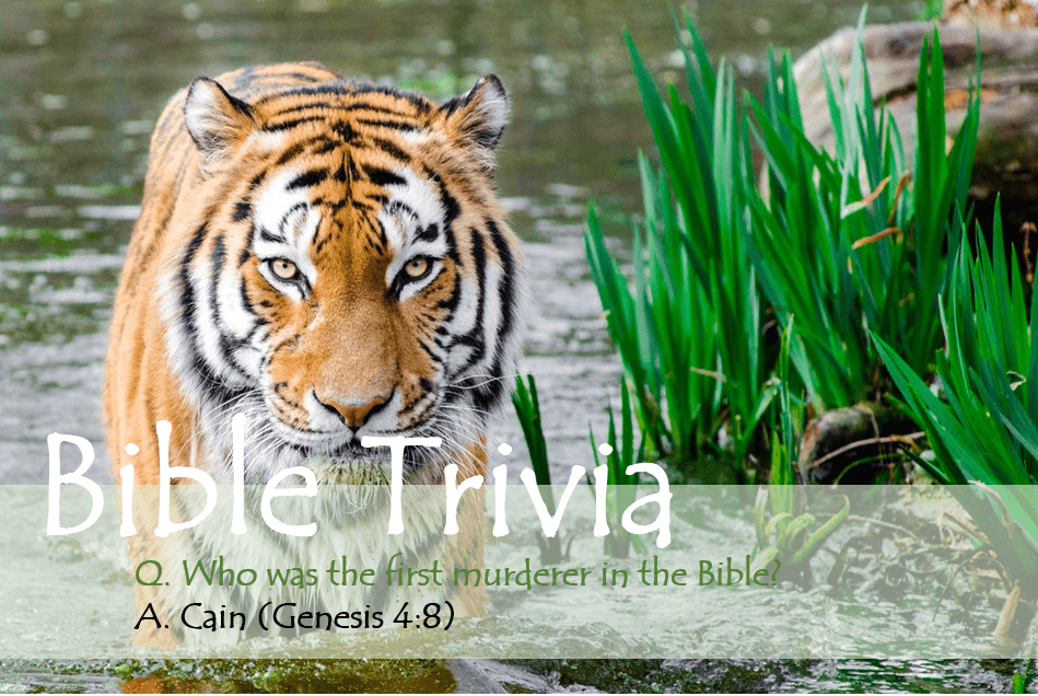 Bible Trivia 110 Capture