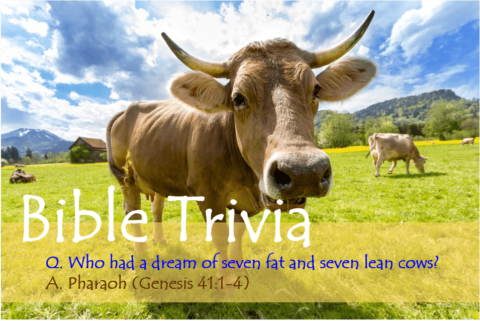 Bible Trivia 306 Capture