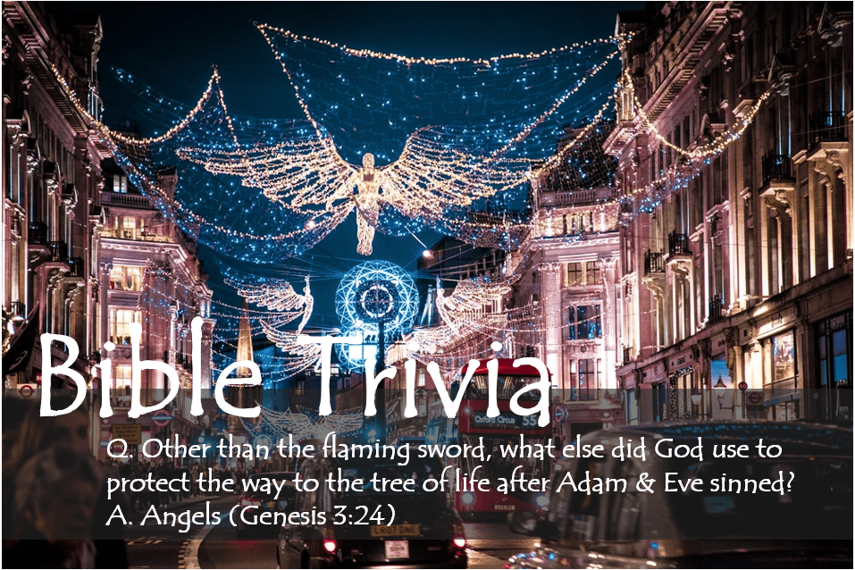 Bible Trivia 308 Capture