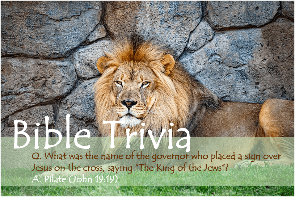 Bible Trivia 310 image revised