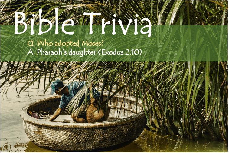 Bible Trivia Exodus 2_10 image
