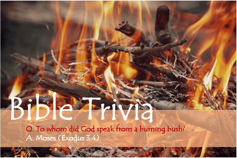 Bible Trivia Exodus 3_4 image