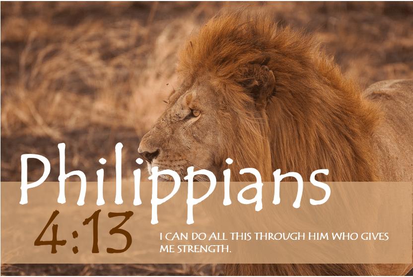 PHILIPPIANS 4:13 verse image