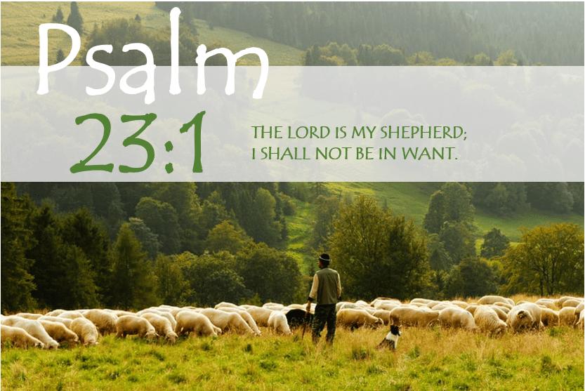PSALM 23:1 verse image