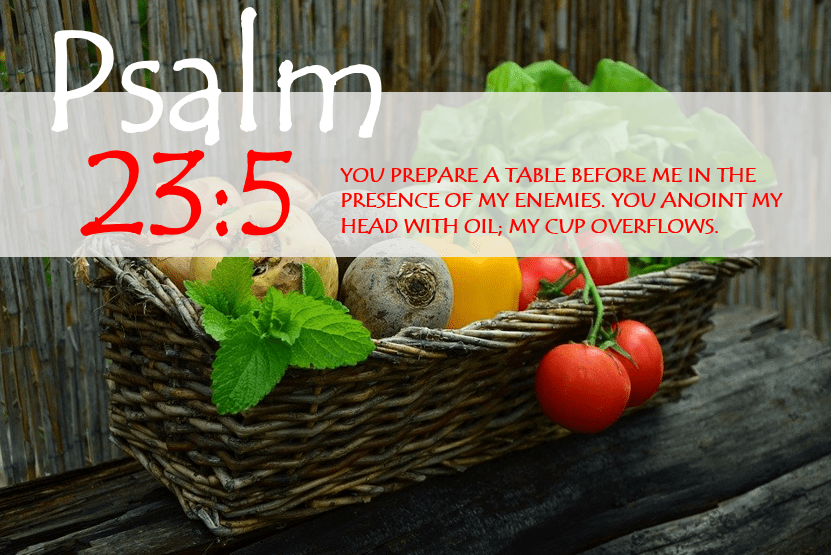 PSALM 23:5 verse image