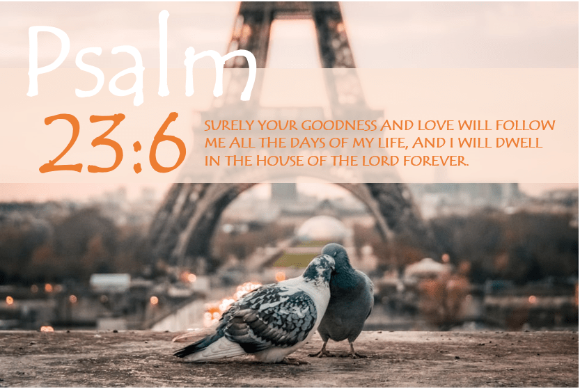 PSALM 23:6 verse image