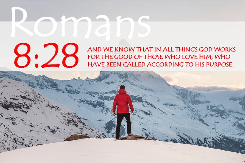 ROMANS 8:28 verse image
