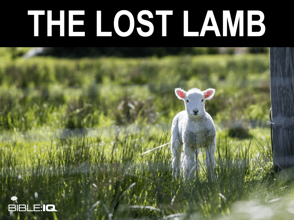 The Lost Lamb