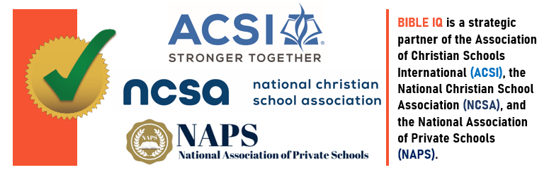 Strategic Partners logo (footer for ACSI NCSA NAPS) image