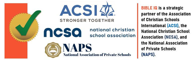 Strategic Partners logo (footer for ACSI NCSA NAPS) image
